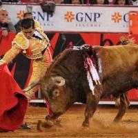 """""""Este año he quedado muy por debajo de lo que yo esperaba"""": Joselito Adame"""