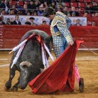 12ª Corrida de la Temporada Grande: Vergüenza torera de Sebastián Castella