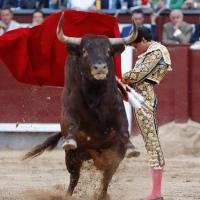 Roca Rey dice Sí al Sorteo de San Isidro 2019: Las Reglas del Juego cambian de bando.