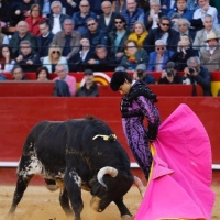 """Fallas 2019: Un """"bajonazo"""" de puerta grande"""