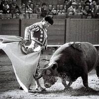 Curro Romero: «Ahora los toreros le tienen más miedo al empresario que al toro»