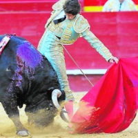Un toro 'Horroroso'