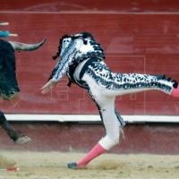 Enrique Ponce descartado para San Isidro, además de lesion de rodilla, tiene fractura de tibia