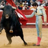 BALANCE DE LA FERIA DE FALLAS » De 'Horroroso' a 'Damasco', dos toros de bandera, a Roca Rey y Paco Ureña