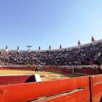 ¿La Fiesta en paz? El sábado 30 arranca Texcoco / Enrique Ponce, multipremiado y lesionado