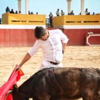 """""""El torero es un reflejo del alma y yo me siento feliz"""": José María Manzanares"""
