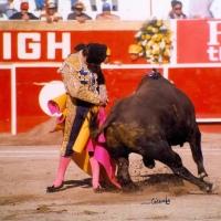 Solo para Villamelones: Guillermo Capetillo en Aguascalientes ¿Por qué? ¿Para qué?