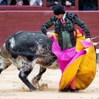 Las Ventas: Resurrección del toreo sevillano en Madrid