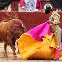 Así vio la prensa la actuación de Joselito Adame en Las Ventas