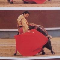 Soñar el toreo Por Joaquín Vidal: 25 años de la antológica faena de Julio Aparicio en Madrid