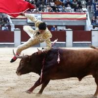 Feria de San Isidro: Aguado, objeto de deseo