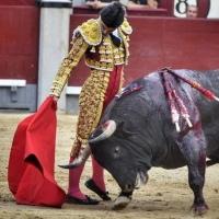 Feria de San Isidro: Para cerrar, cogida grave de Pablo Aguado