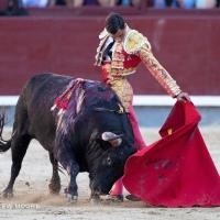 Las Ventas de Madrid: Jaque mate de Paco Ureña a Roca Rey en el rigodón venteño de la Cultura