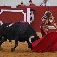 Manuel Escribano indulta el primer toro de Miura en 177 años de historia