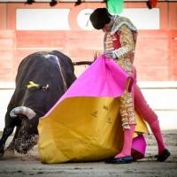 ¿La fiesta en paz? En Madrid, Paco Ureña reivindica la tauromaquia Por Leonardo Páez