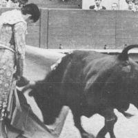Opinión Taurina: Manolete y el toreo de capote