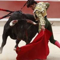 Feria de San Fermín: 'Brujito', la casta indómita