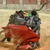 La guerra de Joselito Adame y Leo Valadez
