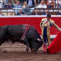 Corridas Generales de Bilbao:  El clasicismo de Diego Urdiales