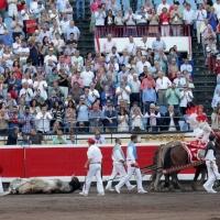 Corridas Generales de Bilbao:  Toros para la caricia