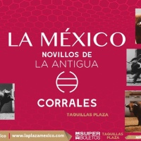 Nueva cita con la ilusión: Inician las novilladas en la Plaza México