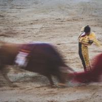 Ocho con Ocho: Lección de sencillez Por Luis Ramón Carazo