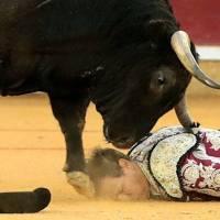 El banderillero Mariano de la Viña sufre una grave cornada en Zaragoza