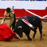 @Taurinisimos 178 - Morante y Saldívar @ La México. @RocaRey y Ferrera en Guadalajara.