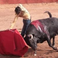 """""""No me gusta torear por torear, prefiero que cada corrida tenga un sentido."""": Andrés Roca Rey."""