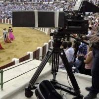 🚨 ¿Hay futuro para los toros?  La tauromaquia ha perdido exposición mediática.