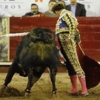 Opinión: Antonio Ferrera ha hecho realidad el sueño.