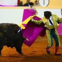 Morante encabezará el primer festejo taurino del año en Burgos.