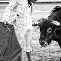 Avance de Guadalajara: Oreja para Luis David. Arte y valor del Payo.