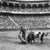 ¿LA FIESTA EN PAZ? - Centenario de Carlos Arruza. Leonardo Páez.