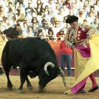 Opinión: Curro y Bergamín.