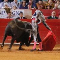 Última Corrida de la Temporada Grande 2019 - 20: En la Plaza México triunfa la bravura sobre las cabalgaduras.
