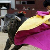 """La Feria de San Isidro sigue aún en pie pese a que, para Abellán, """"sería una temeridad"""""""