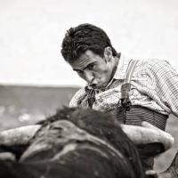 """""""Dicen que es una aventura, pero es una pesadilla"""", torero español varado en Torreón."""