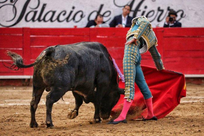Apoteosis de Castella en el Nuevo Progreso.