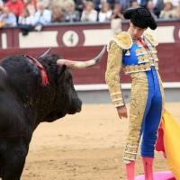 La Fiesta está viva: Madrid por San Isidro.