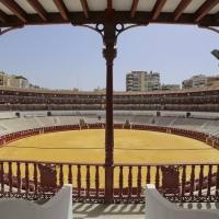 'Festejo Streaming' sin público para este sábado en La Malagueta.