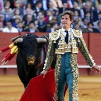 Las corridas de toros caen un 63% en España desde 2007.