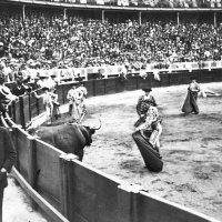 Joselito el Gallo, el rey de los toreros, murió dos veces en Talavera.