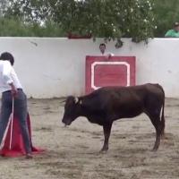 Juan Fernando afina detalles en el campo bravo en el inicio de la 'nueva normalidad' en México.