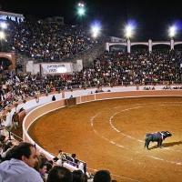 Juriquilla: Cancelan tradicional corrida de toros del 15 de septiembre.
