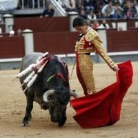 """No concibo toros sin público"": Diego Silveti."