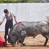 Ocho con Ocho: Se nos cuecen las habas Por Luis Ramón Carazo.