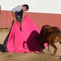 """La feria taurina de Ávila """"aún no está autorizada"""" por la Junta - En el aire la actuación del 'Calita'"""