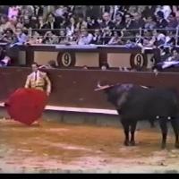 Cuando Curro paro el tiempo en Madrid Por Joaquín Vidal.