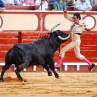 ¿Viejos los cerros? Enrique Ponce causa baja en cartel tras la cogida en la corrida de toros de El Puerto.